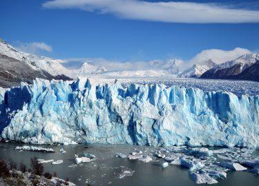 bossen op de Zuidpool ontdekt