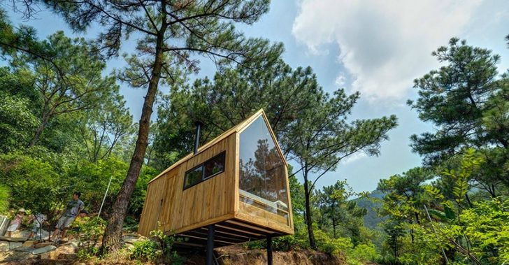 vietnam, forest house