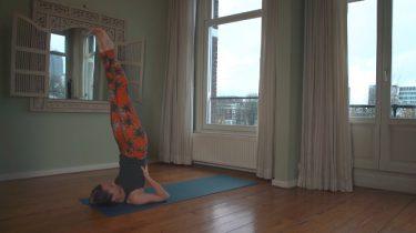 yogatutorials van 5 minuten