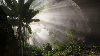 vietnam, hang son doong, grot, klimaat, jungle