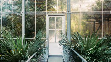 Bedrock - Hortus Botanicus