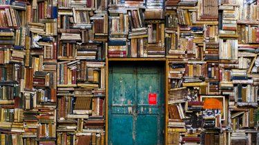 boeken lezen minder sweet cravings