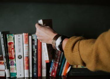 bedrocks boekentips augustus