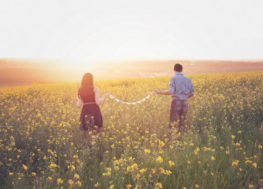 verliefdheid een stelletje in het gras zonsondergang