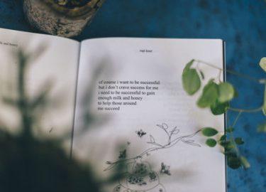 boekentips september
