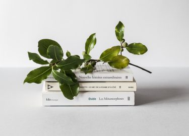 Bedrocks Boekentips oktober
