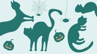 illustratie van zwarte katten en pompoenen