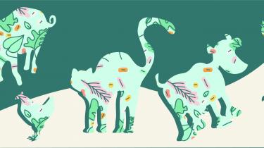 illustratie dieren