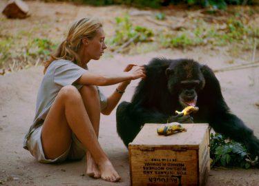 Beeld van Jane Goodall in haar docu op Netflix