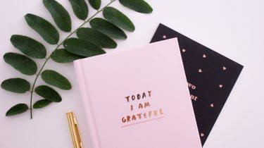 roze notitieboekje