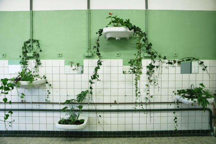 planten in wasbakken