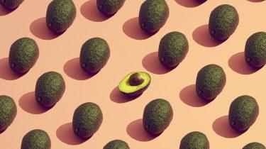 veel avocado's op een rij