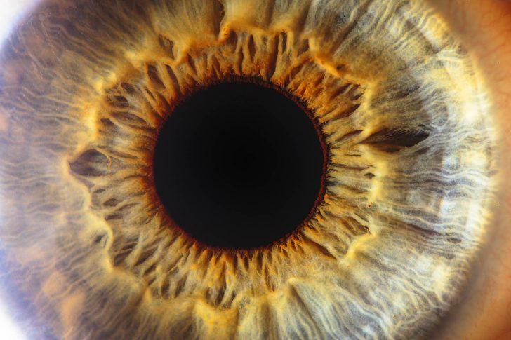 closeup oogfoto