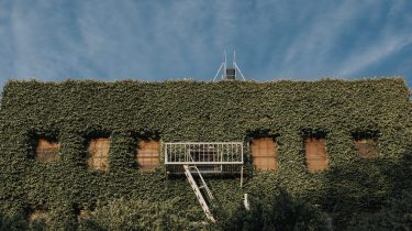 klimop huis begroeid met planten
