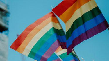 regenboogvlag voor transgender en non-binaire mensen