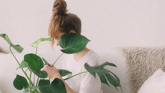 kamerplant kiezen op basis van enneagram