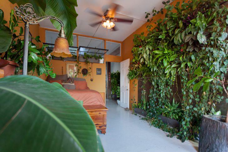 planten in slaapkamer