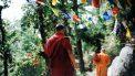 monniken die lopen